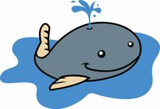LITTLE WHALE Royalty Free Stock Photos