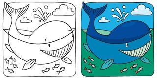 Free Little Whale Coloring Book Royalty Free Stock Photos - 46357958