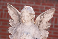 Little white angel Royalty Free Stock Photography