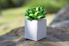 Little White Box Royalty Free Stock Images