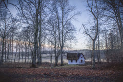 Little white cottage in colourful forest. Small, old cottage in colourful winter/autumn woods. Fields in the background Royalty Free Stock Photography