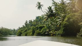 Little white cruise boat sailing slow along beautiful sunny jungle river with lush green palm trees lean over water. Little white cruise boat sailing slow along stock video