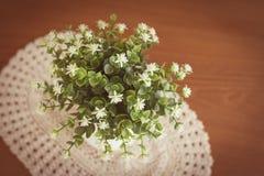 Little white flower in vase on wooden table Stock Images