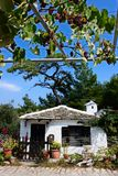 Little white house. Lovely small traditional Greek house near Alyki beach in Thassos, Greece Royalty Free Stock Photo