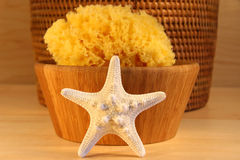 Little white starfish royalty free stock photo