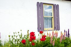 Little white stucco cottage framed with flowers Stock Images
