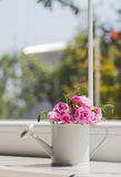Little white watering can with roses bouquet near the window Stock Image