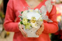 Little wicker basket with white winter flower composition. In woman hands. No face, close up Royalty Free Stock Photography