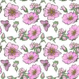 Little wild dog rose seamless background flowers with buds pattern boho style Stock Photos