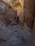 Little Wildhorse Canyon Royalty Free Stock Image