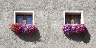 Little windows [2] Stock Images