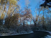 Little Wintery Backroad. Small blacktop road surrounded by winter royalty free stock image