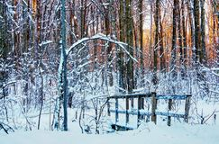 Little wood bridge crossing a creek in the middle of the forest. Covered with snow, at sunset Stock Photos
