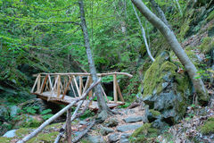 Little wood bridge in a forest Royalty Free Stock Image
