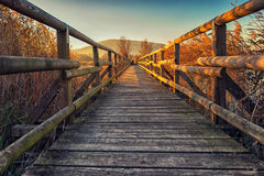 Little wood bridge Stock Images
