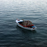 Little wooden boat. With net and paddles Stock Image