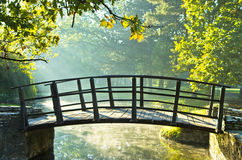 Little wooden bridge on first sunrays at morning stock images
