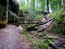Wooden Bridge on the Hiking Trail in Berdorf, Luxembourg. A little wooden bridge for hikers on the internationally awarded Müllerthal Trail in Berdorf stock photos