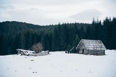 A little wooden house in a forest at Winter stock image