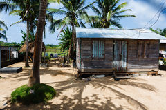 Little wooden house among palm trees and shadows Royalty Free Stock Photos