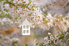 Little wooden house in Spring with blossom cherry Stock Photos
