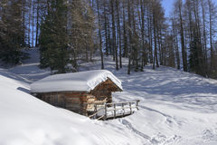 Snowy hut in woods, Costalunga pass Stock Photography