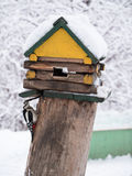 Little Woodpecker sitting around feeders in the form of a wooden house and keeps the grain in its bea Royalty Free Stock Image