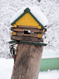 Little Woodpecker sitting around feeders in the form of a wooden house and keeps the grain in its beak Stock Images