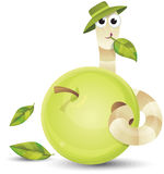 Little worm and apple Stock Photo