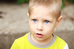 Little 3 year old boy Royalty Free Stock Photo