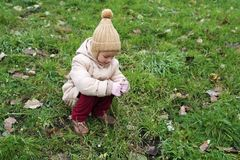 Little girl picking up last autumnal flowers Stock Photography
