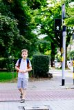 Little 7 years schoolboy crossing road on green light. Dressed in white t shirt and shorts. Blue backpack Stock Photography