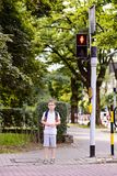 Little 7 years schoolboy waiting for green light. Dressed in white t shirt and shorts. Blue backpack Royalty Free Stock Photos