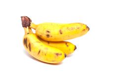 Little yellow bananas Royalty Free Stock Image