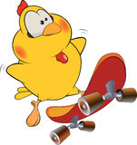 Chicken and skate board cartoon Stock Photos