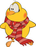 Chicken with a scarf cartoon Royalty Free Stock Photography