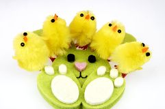 Little yellow chickens Easter decorations Stock Images