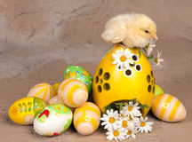 Chick on easter eggs. Little yellow easter chick sitting on easter eggs Stock Photography