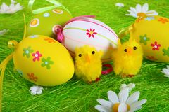 Little yellow Easter chicks Stock Images