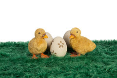 Little yellow Easter ducklings Stock Images