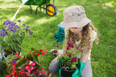 Little young girl engaged in gardening Stock Photos
