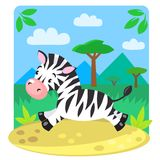 Little Zebra Stock Photo