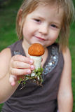 Littlemushroom Stock Photos
