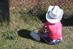 Littlest Cowgirl. Young girl sitting with cowboy hat on watching a rodeo Stock Images