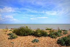 Littlestone beach English Channel scenic view Royalty Free Stock Photography
