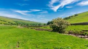 Litton, North Yorkshire, Engeland, het UK royalty-vrije stock afbeeldingen