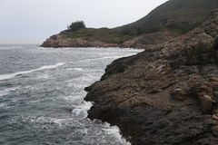 Littoral Photo libre de droits