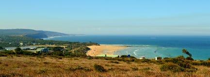 Route d'océan de littoral d'Anglesea grande Image libre de droits