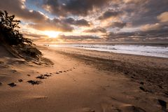 Littoral danois de plage Images libres de droits
