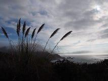 Littoral de Big Sur Photos libres de droits
